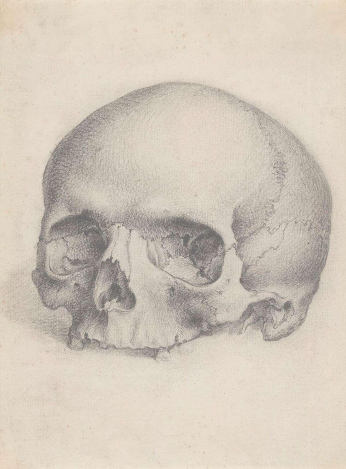 czaszka scrum