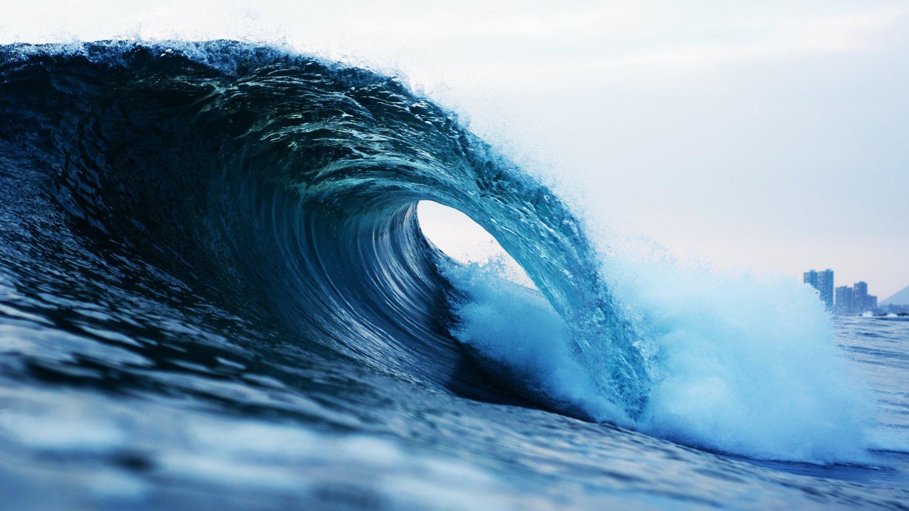 tsunami juniorów